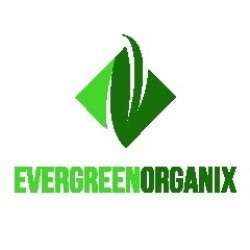 Evergreen Organix