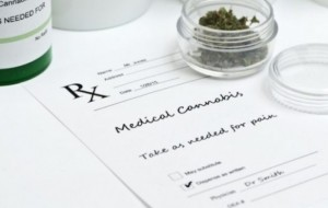 When Workplace Insurance Covers Medical Marijuana