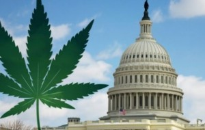 Federal bill would protect medical marijuana states, provide access to veterans