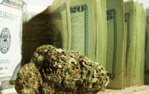 Marijuana Stock First Alert: One Cannabis Company Commanding Attention