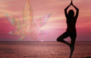 Marijuasana Uses Cannabis to Find Your Balance