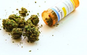 Could Medical Cannabis Break the Painkiller Epidemic?