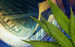 5 Marijuana Stocks that Will Benefit From Marijuana Becoming Legal in More States