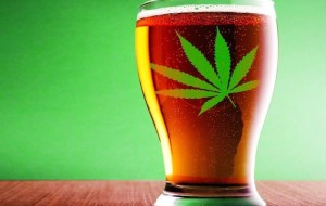 Is the Best Marijuana Investment a Beer Stock?