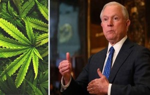 In the midst of Congressional grilling, Sessions takes heat on marijuana attitude