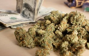 Marijuana Stocks Burning Shareholder Value?