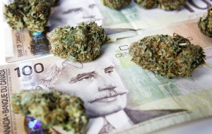 Canada's Marijuana Stocks So Hot it's Difficult to Bet Against Them