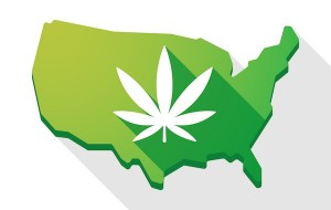 Marijuana Legalization 2018: Which States Might consider Cannabis Laws This Year?