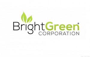Bright Green Plans Grants, New Mexico, Cannabis Research & Production Complex